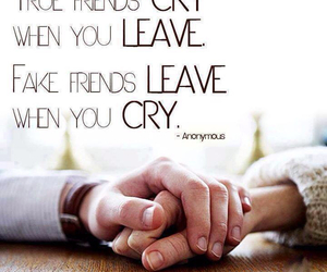 friends, quote, and cry image