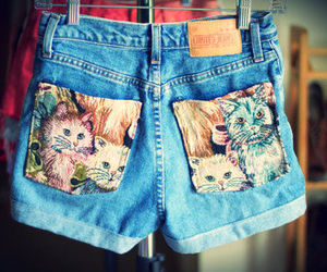 cat, shorts, and fashion image