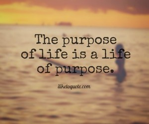 life, purpose, and quotes image