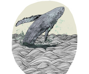 breach, illustration, and nature image