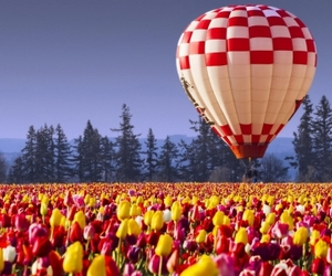 balloon, field, and spring image