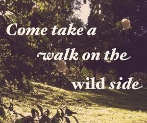 quote, walk, and wild image