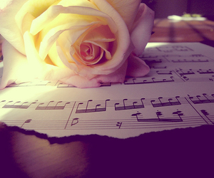 music, rose, and flower image