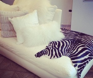 zebra, bedroom, and pillow image