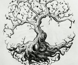 beautiful, tree, and black and white image