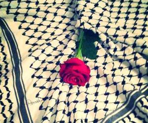 free, love, and free palestine image