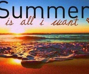 beach, need, and summer image