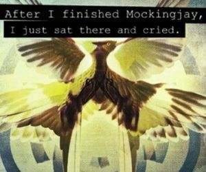 the hunger games and mocking jay image
