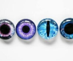 eyes, blue, and purple image