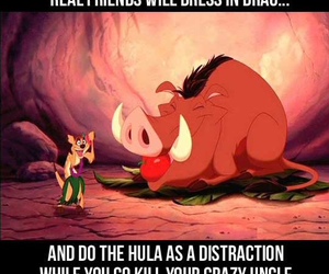 funny, friends, and lion king image