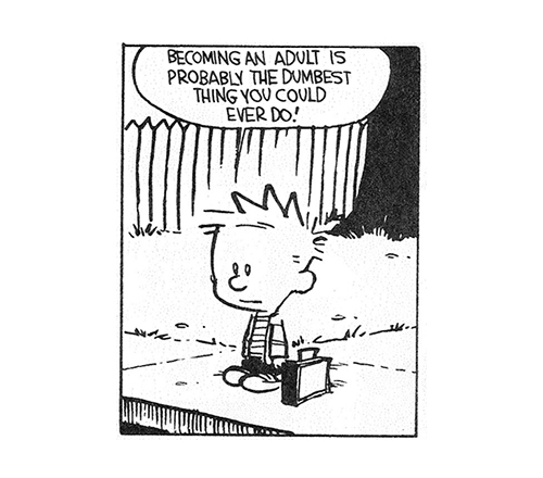 comic and calvin and hobbes image