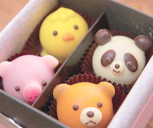 food, panda, and pig image