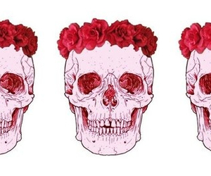 skull, pink, and flowers image