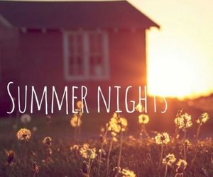 summer, night, and flowers image