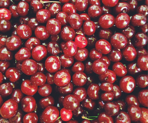 cherry, food, and summer image