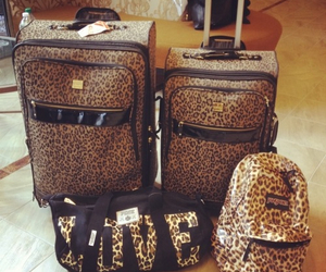 bag, leopard, and travel image