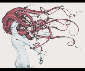 drawing, octopus, and hair image
