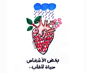 arabic, عربي, and people image