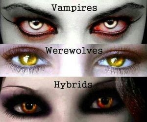 vampire, hybrid, and werewolf image