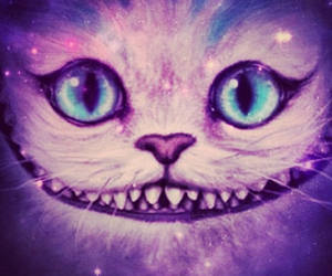 aliceinwonderland, cat, and galaxy image