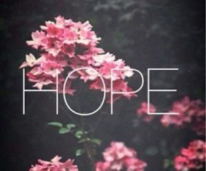 hope, flowers, and pink image
