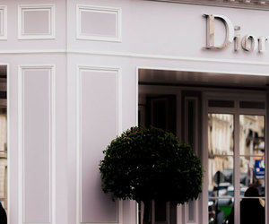 car, dior, and style image