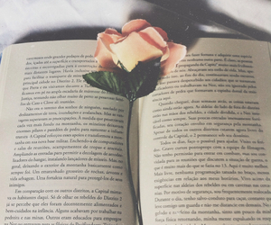book, rose, and cute image