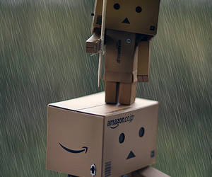 box, danbo, and rain image