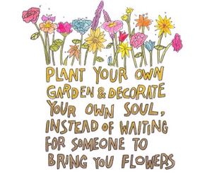 flowers, inspire, and friendship image