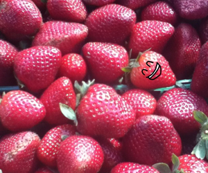 face, red, and strawberries image