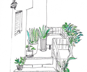 plants, green, and drawing image