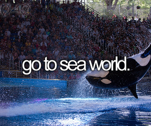 before i die, world, and bucket list image