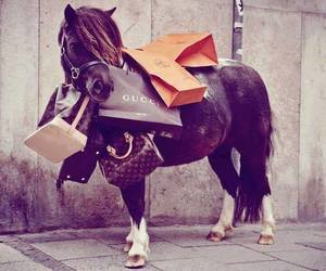 horse, gucci, and shopping image