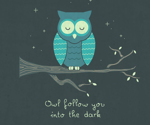 owl, follow, and night image