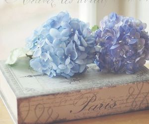 book, flowers, and hydrangea image