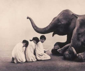 elephant, children, and Gregory Colbert image