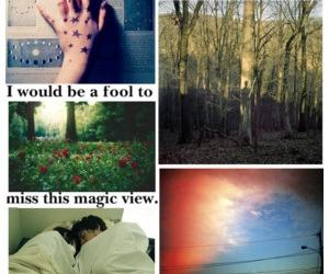 adventure, life, and pretty image
