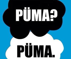 puma, magcon, and cameron dallas image