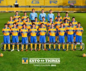 tigres, equipo, and team image