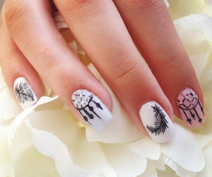 nails, feather, and white image