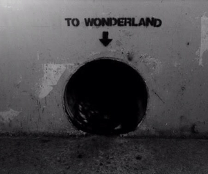 b&w, lol, and to wonderland image