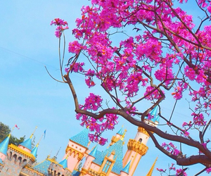disneyland, pink, and cinderella castle image