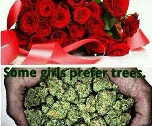 weed, tree, and flowers image