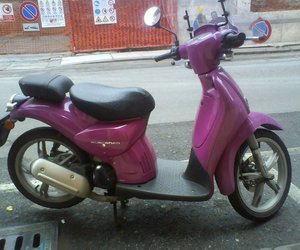 italy, magenta, and pink image