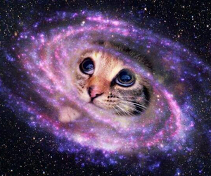 cat, eyes, and galaxy image
