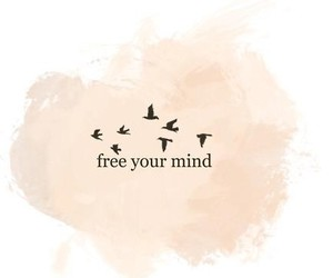 free, bird, and mind image