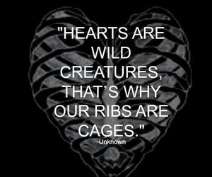 cage, wild, and quote image