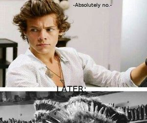 1d, funny, and harry image