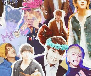 Collage, kpop, and super junior image