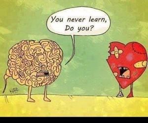 heart, brain, and love image